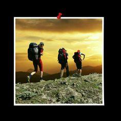 Hiking, Sports, Movie Posters, Movies, Art, Walks, Hs Sports, Craft Art, Films