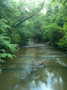 Big Creek, Alpharetta, GA