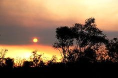 Tis a sunset in the outback, tis.