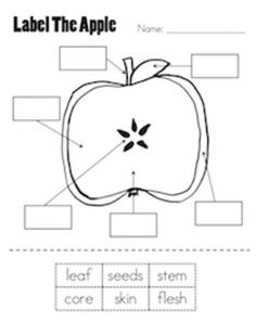 Apples Label parts