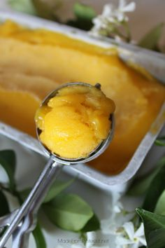 Mango Sorbet Recipe.  My version: In a food processor, I mixed fresh mint and Trader Joe's frozen Mango chunks.  Sooo good.