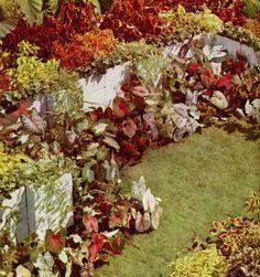 Un jardín sin flores. Fuente: Pratt, R.; Steichen, E.  Garden in color. New York: Garden City Publishing, [1944]