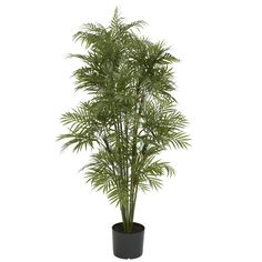 Found it at Wayfair - Nearly Natural Parlor Palm Tree in Pot