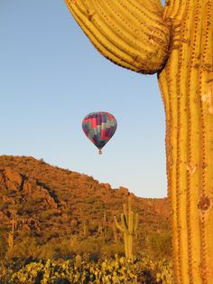 Tucson AZ...sunrise someday I'll be in one up up and away..just hope it doesn't crash into cactus LOL :)