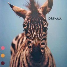 Zebra Dreams