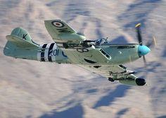 Fairey Firefly Mk5: Caça-bombardeiro embarcado da Royal Navy, equipado com radar. Um dos meus preferidos.