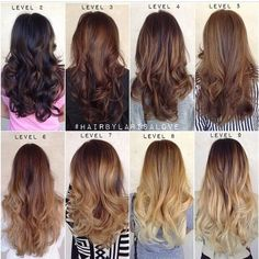 Ombré haircolor chart by levels