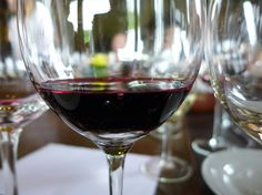 The two days we spent taking Mendoza wine tours rate among the best single days of food and wine I've had traveling anywhere in the world! The Province, First Girl, Mendoza, Singles Day, Wine Recipes, South America, Alcoholic Drinks, Traveling, Thanksgiving