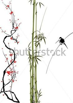 abstract-branches-of-bamboo-cherry-tree-and-bird-isolated-on-the-white-background_109819040.jpg (316×450)
