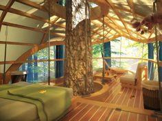 Casa na arvore?! (Eco resort E'terra Samara)