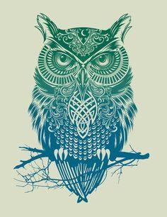 owl   Tumblr
