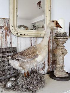 princessgreeneye: aufräumen, dekorieren und Fotos zur Ablenkung........................