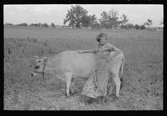 Farmer's wife with cow, Southeast Missouri Farms. By Photographer Russell Lee, 1903-1986