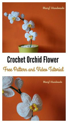 Crochet Orchid Flower Free Pattern and Video Tutorial