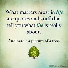 The sarcastic poster. What matters most in life are quotes and stuff that tell you what life is really bout. And here's a picture of a tree... Click through to buy this on canvas! #lol #funny #quotes #wisdom #life