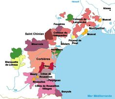Languedoc Roussillon wine map with The French Wine Guide with winemaking, grape varieties Vin Du Languedoc, Saint Chinian, French Wine Regions, Wine Searcher, Wine News, Wine Education, Wine Guide, In Vino Veritas, Vitis Vinifera