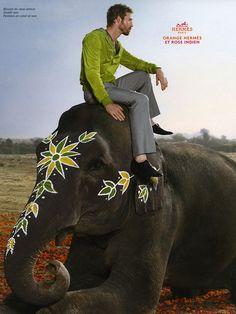 """Hermes """"Elephant"""" Campaign"""