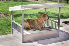 Douglas Outdoor Dog Bed with Cover