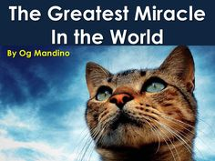 The Greatest Miracle In The World by Sompong Yusoontorn via slideshare Fails, World, Animals, Wedding Ring, Grief, Heavens, Animales, Animaux, Make Mistakes