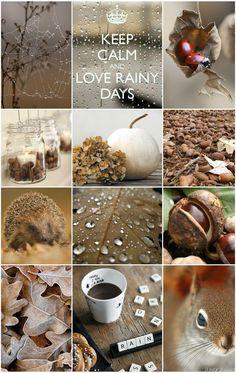 Bonjour, bonjour, Et bien voilà nous y sommes .... en automne !!! Remarquez que nous avons tout de même été gatées coté météo !! Ce mois ci...