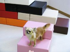 Becobe Waterproof Leather Foldable Pet Stairs Detachable Pet Bed Cat Dog Ramp 2 Steps