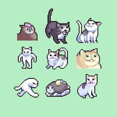 Pixel rendition of some of the most famous cat memes : pixelart Pixel Pattern, Pattern Art, Piskel Art, Cool Pixel Art, Funny Pixel Art, Arte Indie, Graphisches Design, 8bit Art, Pixel Art Games
