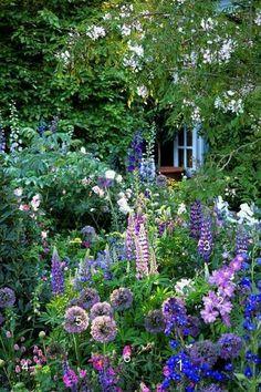 El jardín y la ventana.