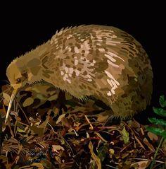 Brown Spotted Kiwi on Photo Block Photo Blocks, Brown Spots, Kiwi, Birds, Website, Digital, Prints, Painting, Painting Art