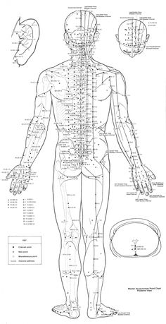 Here you can see all of the different points and the meridians that the specialist use in order to treat what is going on with you. As you can see, you don't necessarily put a point in your head if it hurts, but you put it in your feet.