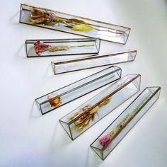 伝えたいのは植物の造形美。廃材リユースプロジェクト「ハコミドリ」 | BASE Mag.