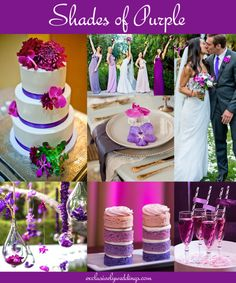 Purple Wedding - Don't overlook five luscious shades of purple. Read more: http://blog.exclusivelyweddings.com/2014/04/20/your-wedding-color-dont-overlook-five-luscious-shades-of-purple/