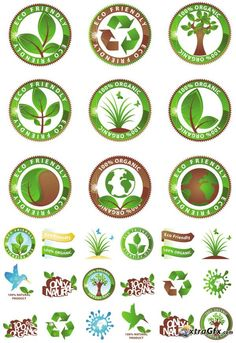 Green Icon in Vector