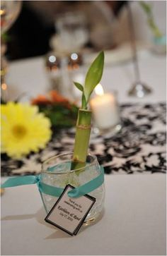 50 for 100 Simple Lucky Bamboo Favors httpwwwbuyluckybamboo