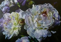 Marcella Kaspar - i love her paintings, they are painted of light and shadow. Oil Painting Pictures, Pictures To Paint, Peony Painting, Painting Prints, Painting Clouds, Flower Paintings, Oil Paintings, Acrylic Flowers, Watercolor Flowers
