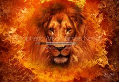 Fiery Lion no Hebrew WM web.jpg