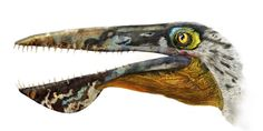 Ancient Flying Beast Named After 'Avatar' Creature