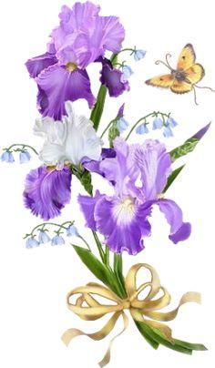 GIFS HERMOSOS: florea encontradas en la web