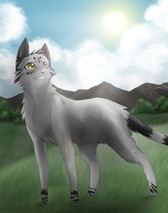 Waterstar, female, 17 moons, kind, fast, loyal, wise, great hunter, great fighter, sly.likes Lionclaw