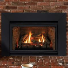1000 Ideas About Gas Fireplace Inserts On Pinterest