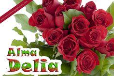 Rosas rojas con nombres de personas y mensajes para compartir   Banco de Imágenes Gratis (shared via SlingPic)