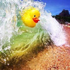 adoro FARM - do instagram @FARM Rio