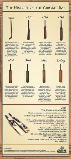 The History of The Cricket Bat #infographic #bat #cricket