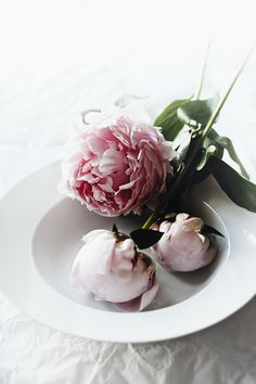Dusty pink peonies. #flowers #wedding #love