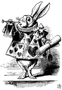 Going through the Rabbit Hole - the journey to wonderland ...