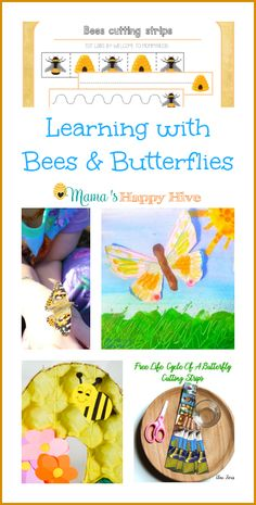 Enjoy bee cutting strips, life-cycle printables, artwork, crafts, butterfly mobile for infants, insect unit for tots, and hands-on learning about bees! - www.mamashappyhive.com