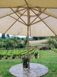 Montoliva Vineyard And Winery