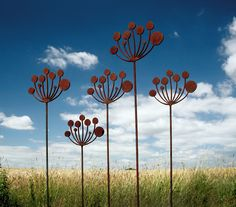 A group of rusted metal garden sculptures inspired by the seehead of the Cow Parsley plant.