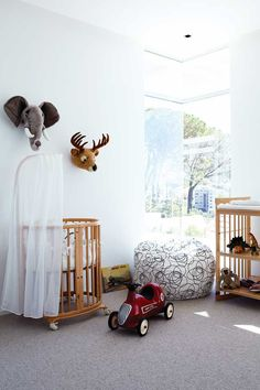 Plush taxidermy and the Stokke sleepi cot - quite different!