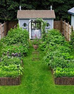 box garden