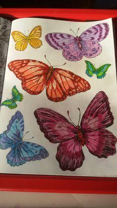 Vlinders love it.. #kleurenvoorvolwassenen #stabilo #potloden Pottery Designs, Butterflies, Butterfly